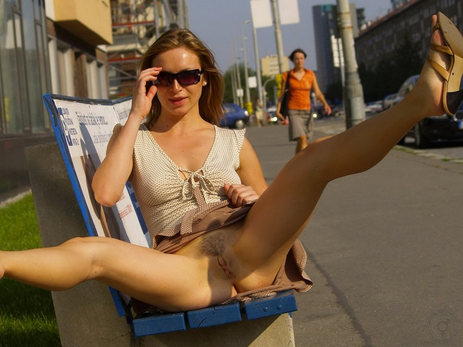 Exposed in Public Photo Hairy Pussy Flashed on Public Street